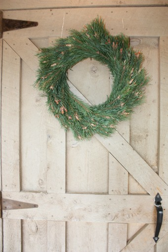Scotch Pine Tips Wreath