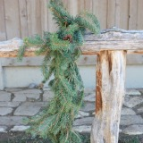 Scotch Pine Garland